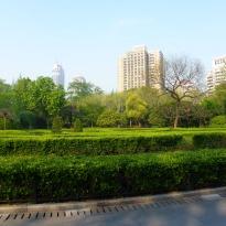 Fuxing Park 11