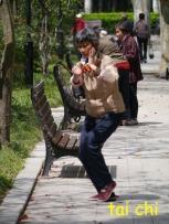 Fuxing Park Tai Chi 1