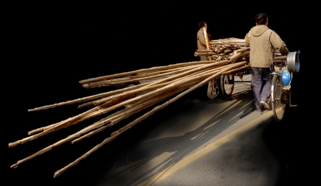 nuit de bambous